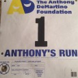 anthonys-run-2014-400